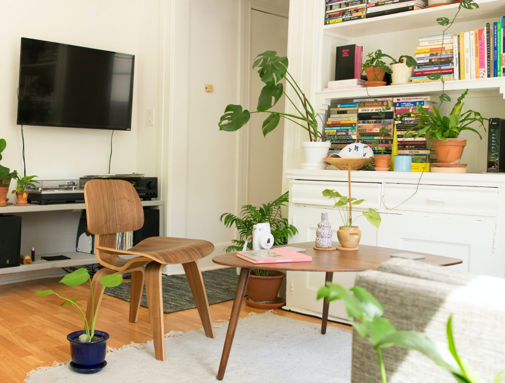 cute apartment with plants